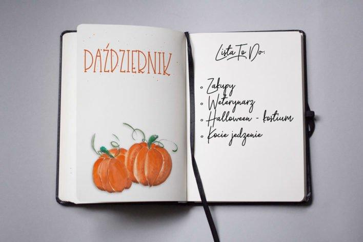 buJo okładka jesien pazdziernik